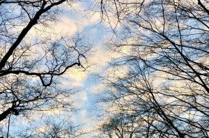 """Ich grüße Sie zum Ferienbeginn mit dem wunderbaren Satz von Astrid Lindgren: """"Und dann muss man ja auch noch Zeit haben, einfach da zu sitzen und vor sich hin zu schauen."""" Ich ergänze: … und in die Weite des Himmels! Herzliche Grüße Carmen Schmitt"""